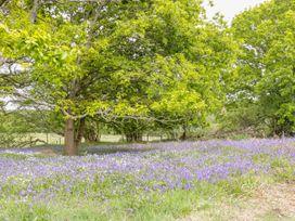 Pheasant Lodge at Chapel Lodges - Dorset - 974603 - thumbnail photo 23