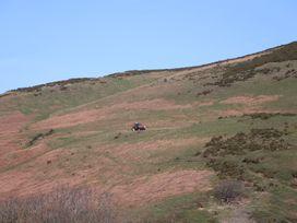 Castell Capel - North Wales - 975692 - thumbnail photo 31