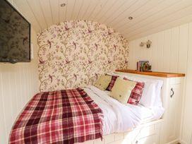 Cwt Caron - Mid Wales - 975775 - thumbnail photo 9