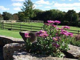 The Old Byre - Devon - 975800 - thumbnail photo 14