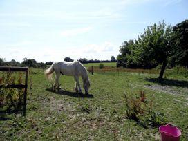 Pittards Farm Cottage - Somerset & Wiltshire - 975937 - thumbnail photo 17