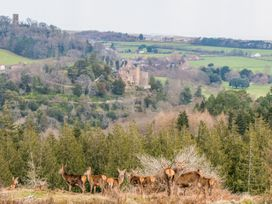 Castle View - Somerset & Wiltshire - 975960 - thumbnail photo 24