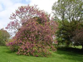 Porlock Vale House - Somerset & Wiltshire - 975962 - thumbnail photo 57
