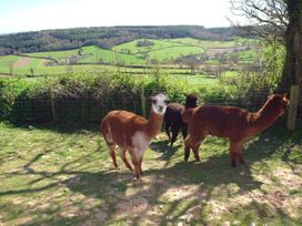 Lower Wadden Farmhouse and Annexe - Devon - 976018 - thumbnail photo 33