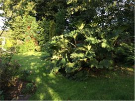 Hope Cottage - Devon - 976094 - thumbnail photo 30