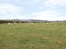 Shepherds Cottage - Northumberland - 976138 - thumbnail photo 26
