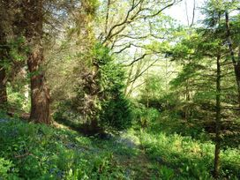 Stert Mill - Devon - 976205 - thumbnail photo 21