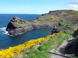 Ingledene - Cornwall - 976315 - thumbnail photo 21