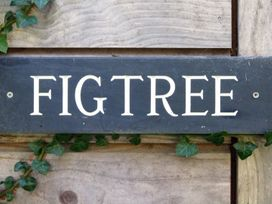 Figtree Cottage - Cornwall - 976334 - thumbnail photo 17
