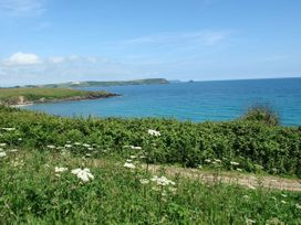Blue Seas - Cornwall - 976468 - thumbnail photo 38