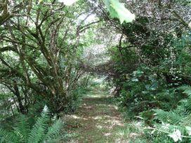 Badger Cottage - Cornwall - 976529 - thumbnail photo 25