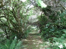 Swift Cottage - Cornwall - 976530 - thumbnail photo 22