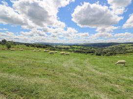 Hillside View - Mid Wales - 976617 - thumbnail photo 18