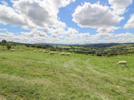 Woodland View - Mid Wales - 976618 - thumbnail photo 13