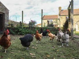 Church Farm Annex - Yorkshire Dales - 976821 - thumbnail photo 11