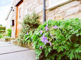 Bryn Farm Cottage - North Wales - 977084 - thumbnail photo 20