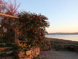 Clamoak Cottage - Devon - 977305 - thumbnail photo 25