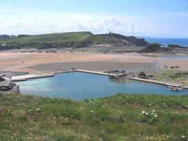 Driftwood - Cornwall - 977604 - thumbnail photo 16