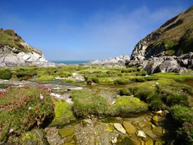Seal Cottage - Devon - 977730 - thumbnail photo 17