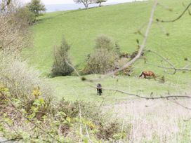 16 Badgers Retreat - Yorkshire Dales - 979659 - thumbnail photo 12