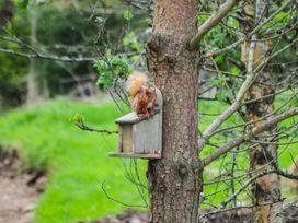 Woodside - Scottish Lowlands - 979695 - thumbnail photo 16