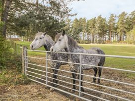 Muiryhall Steading - Scottish Lowlands - 980302 - thumbnail photo 18