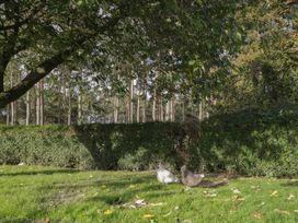 Muiryhall Steading - Scottish Lowlands - 980302 - thumbnail photo 19
