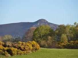 Knowehead Bothy - Scottish Lowlands - 980561 - thumbnail photo 26