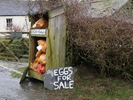 Rose Cottage - Lake District - 981012 - thumbnail photo 31