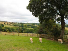 Shepherds Cabin at Titterstone - Shropshire - 981606 - thumbnail photo 19