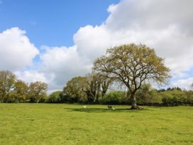 Chilvery Farm Cottage - Devon - 982185 - thumbnail photo 24