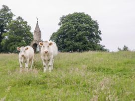 The Milking Barn - Somerset & Wiltshire - 982461 - thumbnail photo 22