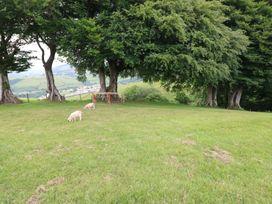 Caner Bach Lodge - South Wales - 983095 - thumbnail photo 21