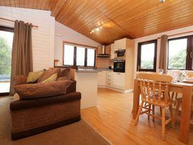 Willow Lodge - Cornwall - 983741 - thumbnail photo 8