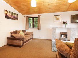 Willow Lodge - Cornwall - 983741 - thumbnail photo 6