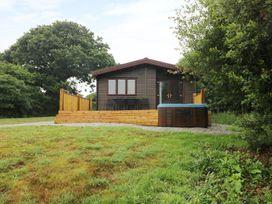 Willow Lodge - Cornwall - 983741 - thumbnail photo 25