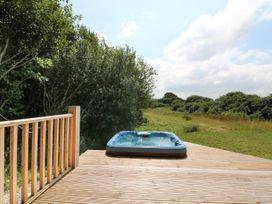 Willow Lodge - Cornwall - 983741 - thumbnail photo 27