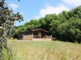 Willow Lodge - Cornwall - 983741 - thumbnail photo 28