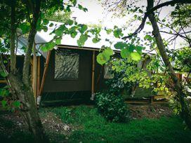 Stellar Safari Lodge - Mid Wales - 984103 - thumbnail photo 41
