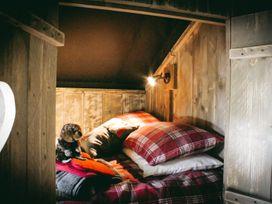 Stellar Safari Lodge - Mid Wales - 984103 - thumbnail photo 25