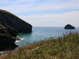 Gull Rock - Cornwall - 984748 - thumbnail photo 30