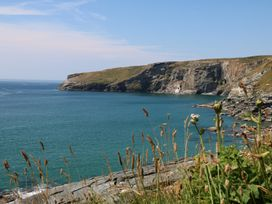 Gull Rock - Cornwall - 984748 - thumbnail photo 31