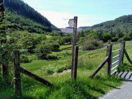 Tanrallt - Mid Wales - 985721 - thumbnail photo 21