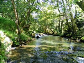 Tanrallt - Mid Wales - 985721 - thumbnail photo 22