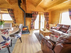 Manor Farm Lodges - Red Kite Lodge - Mid Wales - 986720 - thumbnail photo 4