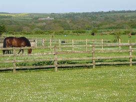 Holly Edge - Whitby & North Yorkshire - 986858 - thumbnail photo 28