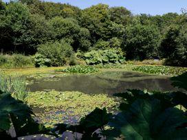 Jane's Place - Devon - 987041 - thumbnail photo 13