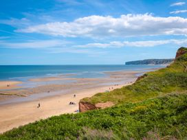 Sunny Crest - Whitby & North Yorkshire - 987902 - thumbnail photo 16