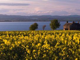 3 Balhelvie Farm Cottages - Scottish Lowlands - 988134 - thumbnail photo 47