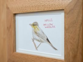 Willow Warbler - Cotswolds - 988607 - thumbnail photo 9